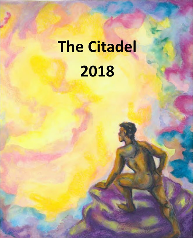 Cover illustration of The Citadel